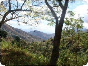 Les montagnes de Lushoto