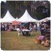 Bizarre_Bazaar_Nairobi_Kenya