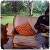 Nicholas mange à coté d´un phacochère