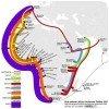 Carte africaine du cablage haut débit