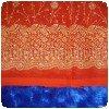 Détails du sari