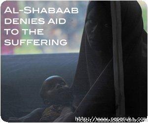 google-ads-shabaab3