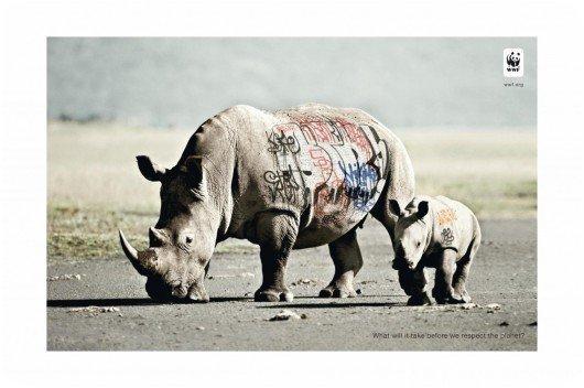 Un graffiti sur un rhinocéros (Kenya)